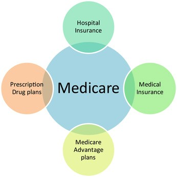 Medicare parts in bubbles